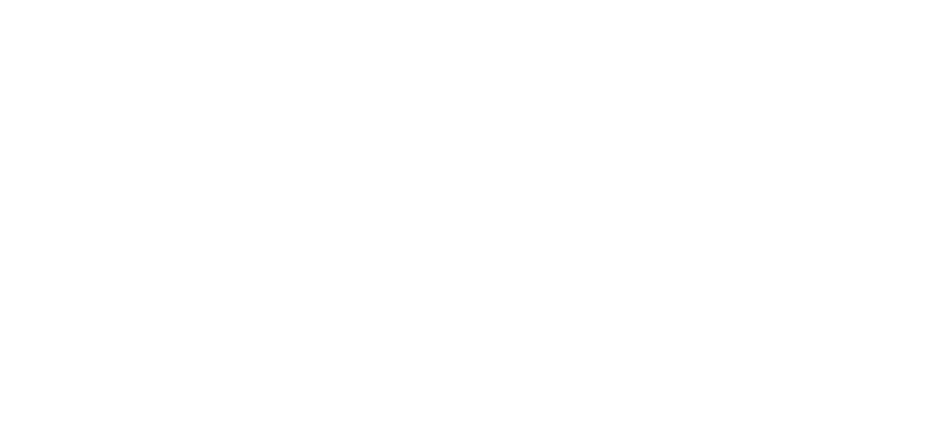 deverr_logo_final_white_big_transparent